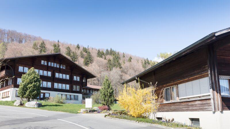 Berner Oberland mit Baum und Schild