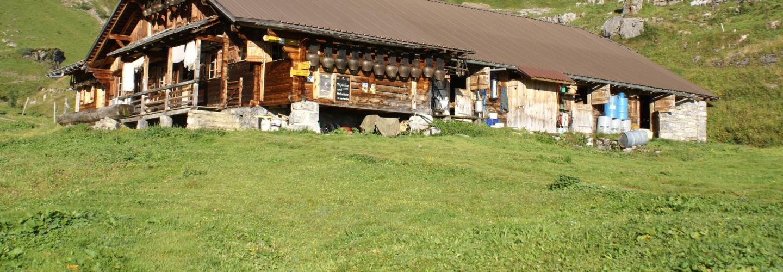 4 4 Alp Suls Alphuette mit Glocken 02 09 2016