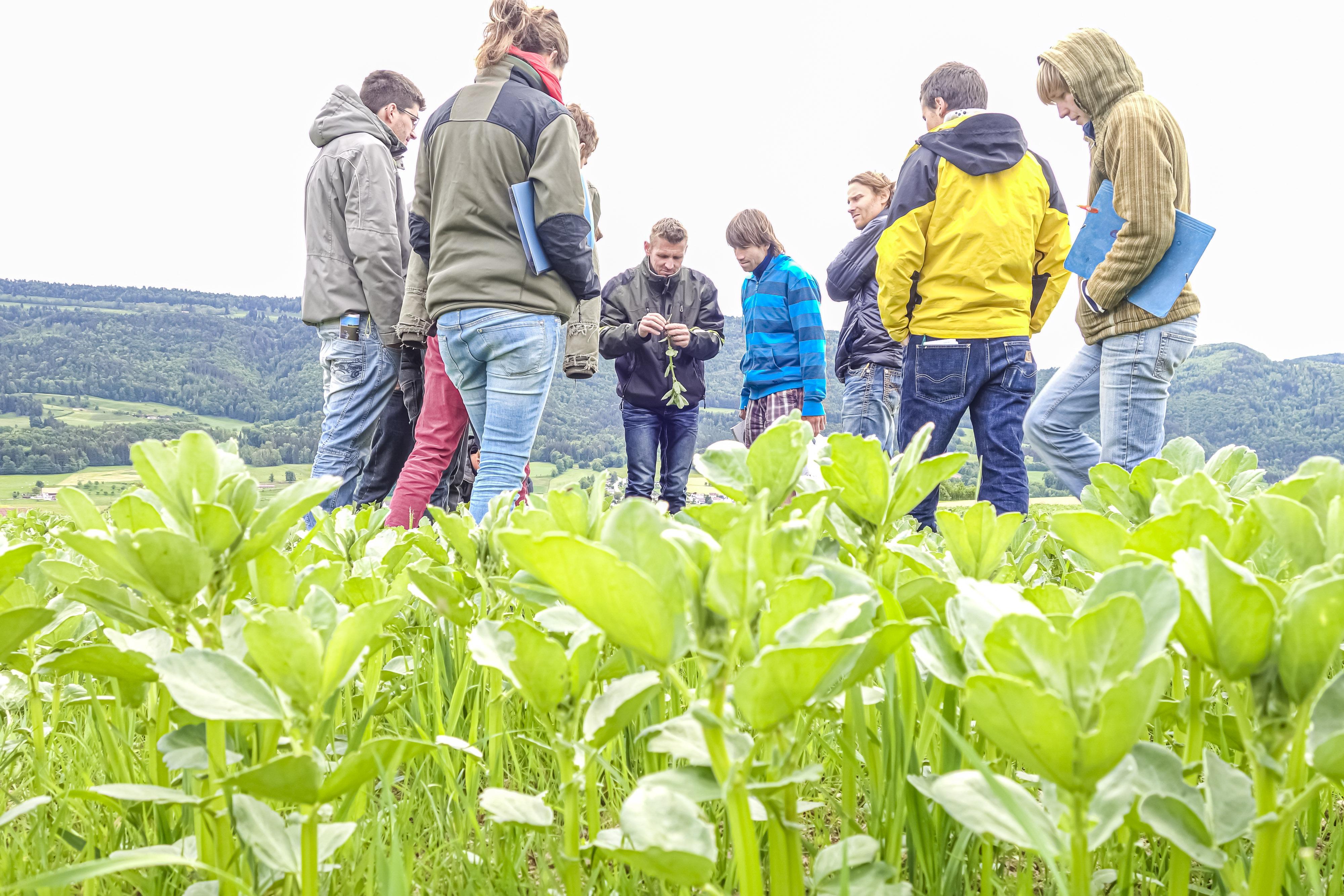 Grundbildung Biolandbau