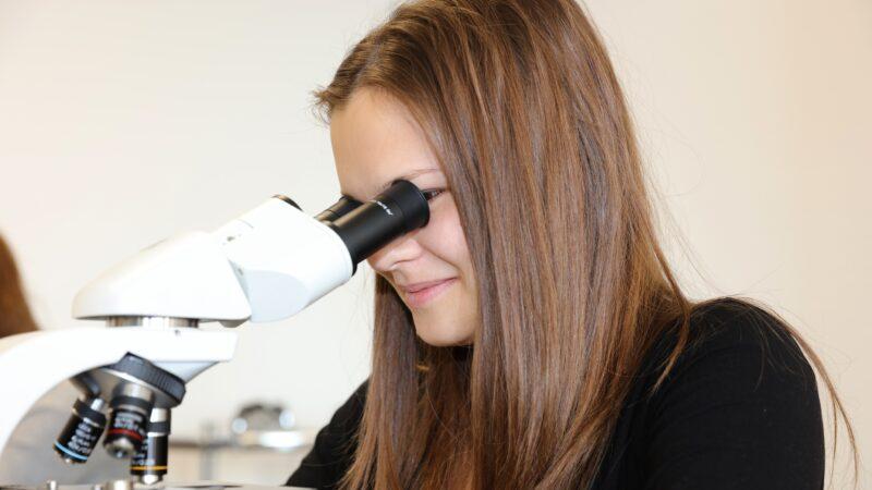 BMS Schueler20171103 Mikroskop0003